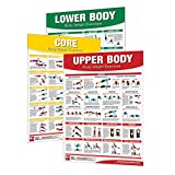 IRON COMPANY Productive Fitness Laminated Fitness Poster - Body Weight Exercises - Set of 3 (Upper Body, Lower Body, Core) - 24' x 36' Wall Chart for Home or Gym - Bodyweight Workout