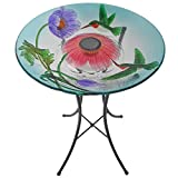 Peaktop 3200670 Outdoor Hand-Painted Hummingbird Fusion Glass Solar Birdbath Bowl Feeder with LED Light and Metal Legs for Patio Garden Backyard, 18-Inch, Blue and Pink
