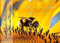 Im Goldenen Glanz der Sonnenblume (Wandkalender 2022 DIN A3 quer): Im Goldenen Glanz der Sonnenblume - Faszinierende Makroaufnahmen der Pollen und Bluetenblaetter (Monatskalender, 14 Seiten )