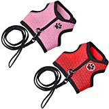 EXPAWLORER 2 Pack Rabbit Harness with Stretchy Leash - Suitable for Dogs, Puppy & Cats Adjustable Buckle Breathable Mesh for Small Pets Walking, Red and Pink