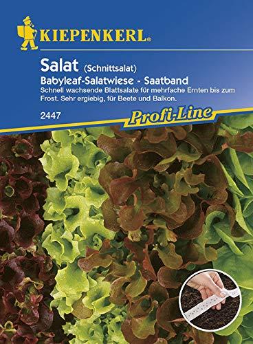 Salatsamen - Schnittsalat Saatband von Kiepenkerl