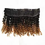Double Wefts 3C 4A Afro Kinky Curly Clip in Human Hair Extensions for African American Black Women (Volume Kinky Curly 12' 55g, T1B/27)