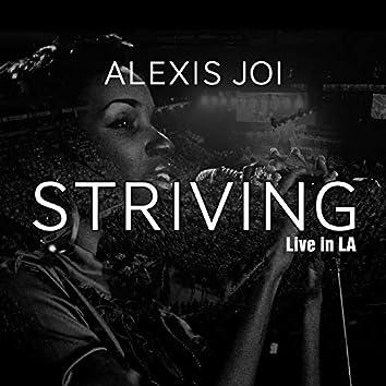 Striving (Live in La)