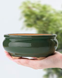 SHEAR ZEN Bonsai Pot 6 Inch Green Oval Ceramic for Bonsai Plant or Bonsai Tree Starter Kit