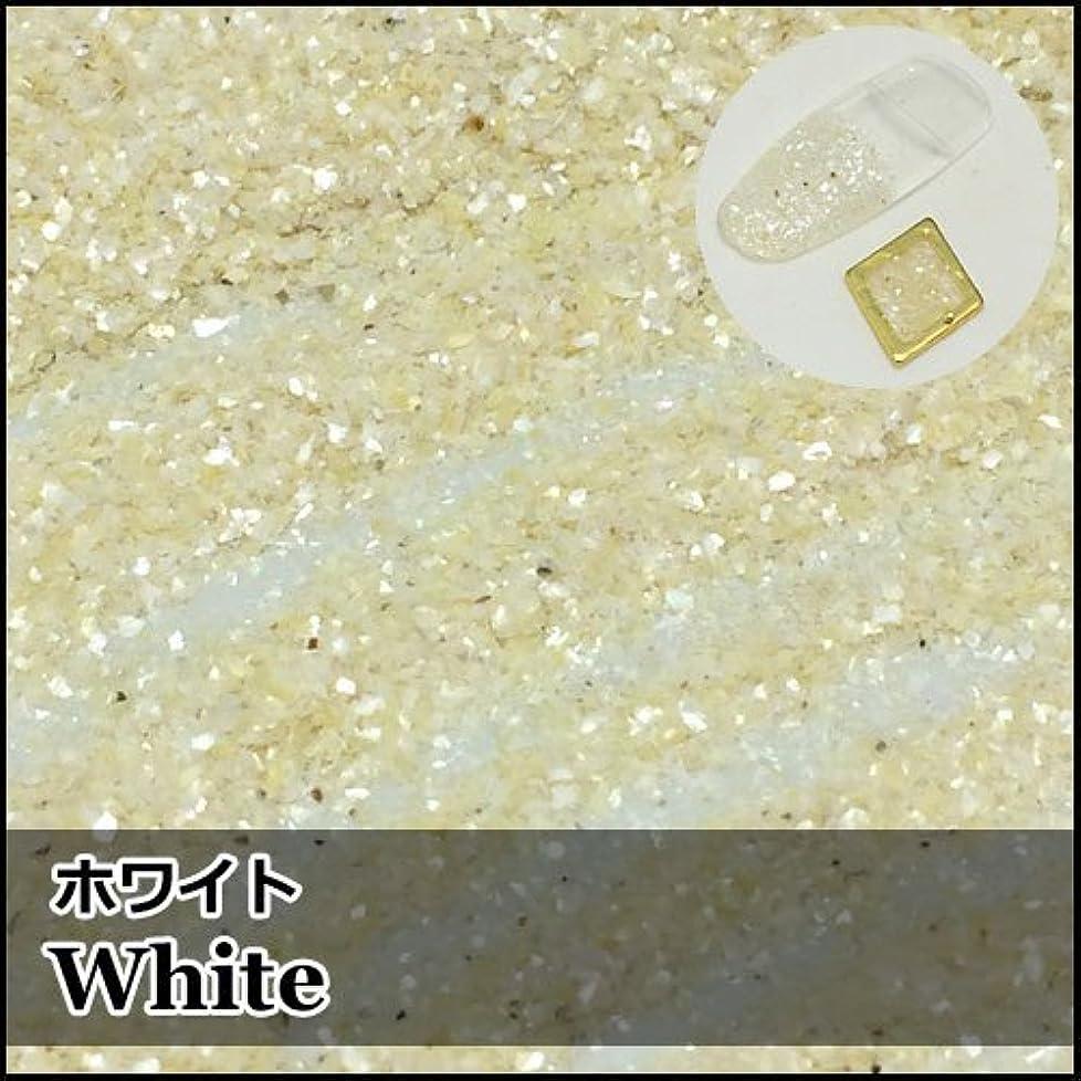 次へケイ素参照する微粒子クラッシュシェル「ホワイト」4g入り [並行輸入品]