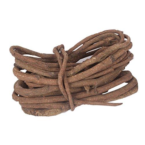 clasificación y comparación SMSunniMix Raíz seca natural de ratán rama seca Decoración artificial para banquetes… para casa