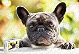 300 Piece Jigsaw Puzzle - French Bulldog Cartoon Large Size Wooden 20.6 X 15.1 Inch