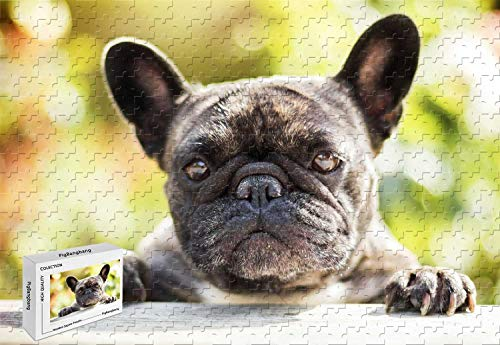 500 Piece Jigsaw Puzzle - French Bulldog Good Present to Lover,Friend ect Wooden 20.6 X 15.1 Inch