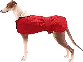 greyhound warm coats