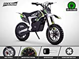 Pocket Cross Électrique 500W - Mini Moto Enfant RX 500 - DIAMON - Limited Edition 2020 - Vert