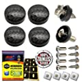 Aootf License Plate Fasteners Screws Caps -ABS Plastic Screw Cover Carbon Fiber Pattern for Matching Carbon Fiber License Plate Frame and Gift -Stainless Steel Plate Frame Screws