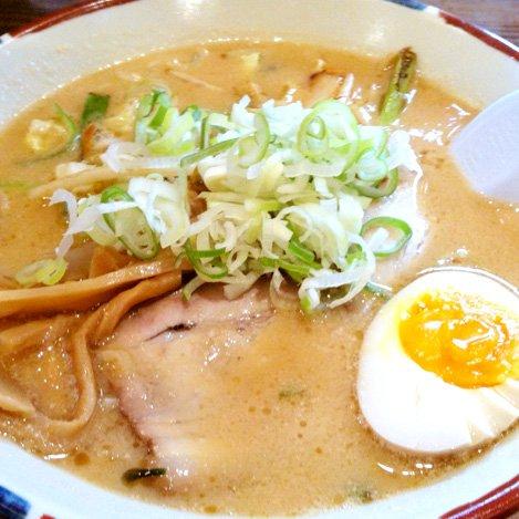 北海道ラーメン 5食セット 札幌熟成生麺 5種食べ比べ (とんこつ味噌5食)