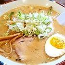 北海道ラーメン 5食セット 札幌熟成生麺 5種食べ比べ 送料無料 (とんこつ味噌5食)