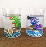 CHENGYIDA 2 piezas acrílico transparente tanque de peces caja de almacenamiento caja lápiz mini pecera acuario