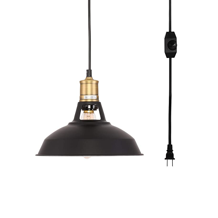 Kingmi Plug-in Pendant Light with Plug in 16.4