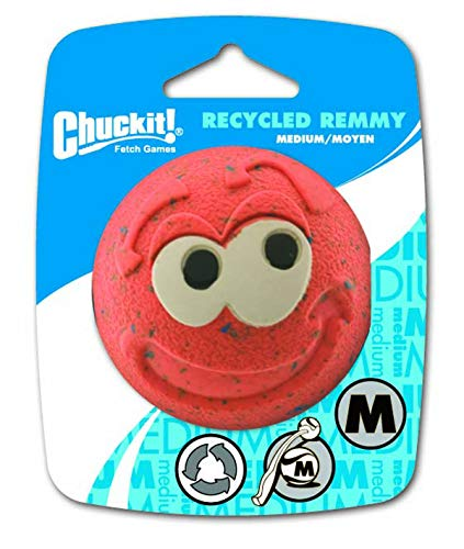 Chuckit! CH20420 Recycled Remmy Medium 1-er Pack