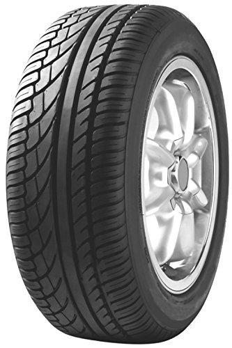 Fortuna F2000 - 225/55R16 95W - Neumático de Verano
