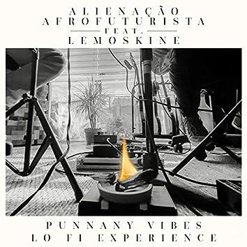Punnany Vibes (feat. Lemoskine) [Lo Fi Experience]