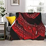 Nature-Roses - Manta de lana de cordero de piel de zorro plateada ultrasuave para sofá, cama, hombres, mujeres y bebés