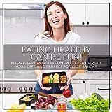 Zoom IMG-2 umami premium bento lunch box