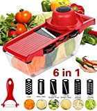 ADOV Mandoline Slicer, 6 in 1 Fruit and Vegetable Slicer, Multi Function Veg Cutter, Interchangeable Stainless Steel with Food Container, Peeler, Hand Protector, Julienne Slice for Potato Tomato Onion