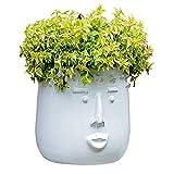 PHLPS Regalos de cerámica plantas de flores Centro Ollas arte hecho a mano de la cara de la sala decoración de jardín de flores adornos de lujo luz almacenaje blanco de la vendimia plantadores de cont