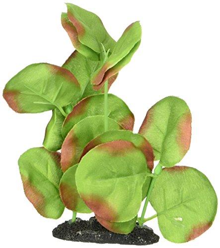 Marina PP115 Naturals Green Moneywort Foreground Silk Plant