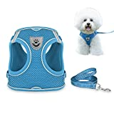 Dog Harness and Leash Set for Walking, Escape Proof Vest Harness with Soft Mesh, Adjustable Velcro, Reflective Strips for Kitten Cats and Puppy Dogs (XS(Chest:10.2'-11.4'), Blue)