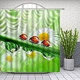 Fmiljiaty Artwork Print Marienkäfer Duschvorhänge Spring Green Pflanze Blumenwasser Tröpfchen Landschaft Badezimmer Dekor Bad Polyester Vorhang -180 * 180CM