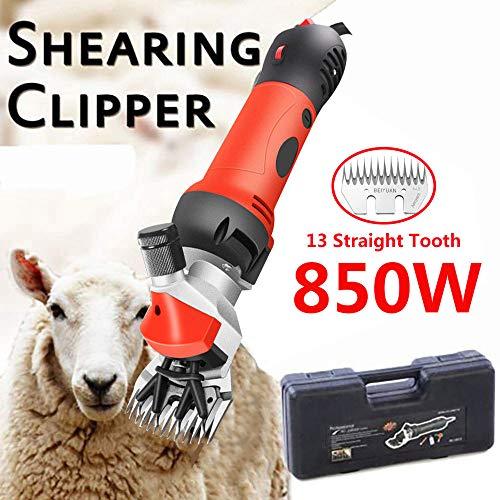 BrightFootBook 850W Tondeuse éLectrique pour Mouton Et ChèVres,Cheveux De Tondeuse à Moutons, Machine Tondeuse pour Moutons,Cisailler à Mouton,Reda