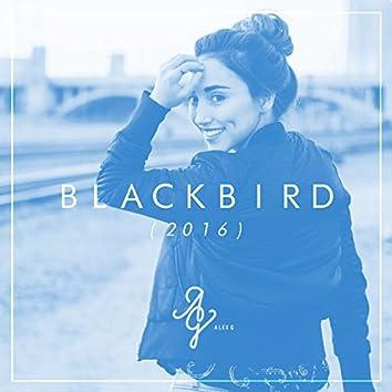 Blackbird (Acoustic Version)