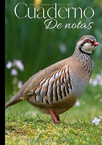 Cuaderno de notas: original y práctico diario de escritura reglada - cuaderno para cazador - caza menor - perdiz   100 páginas en formato 7*10 pulgadas