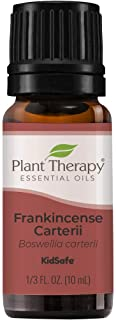 Plant Therapy Frankincense Carterii Essential Oil 100% Pure, Undiluted, Natural Aromatherapy, Therapeutic Grade 10 mL (1/3...