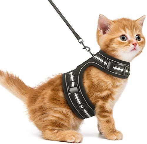 rabbitgoo Katzengeschirr Katzenleine mit Geschirr für Katzen Ausbruchsicher Welpengeschirr für Spaziergänge verstellbare katzenweste für Katzen Kitten Chihuahua Schwarz S