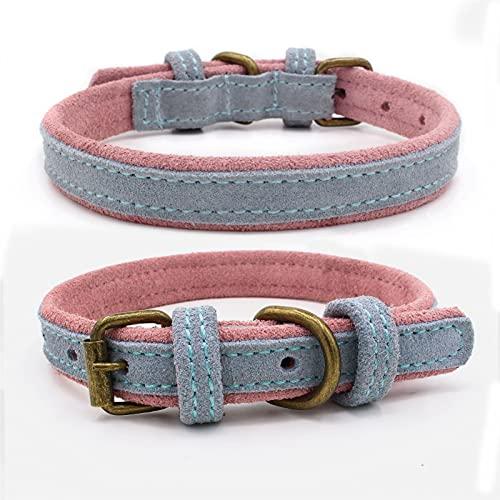 QWEQWE Collar de Cuero para Perros de Cuero para Perros de Animales Ajustables para Perros de Cachorros (Color : Sky Blue, Size : XXL 61x3.5cm)