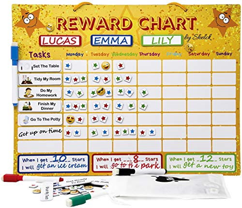 Responsibility Chart for Kids