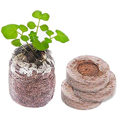 Kokos Quelltabletten mit Nährstoffen: 60 Premium Quelltabs aus Anzuchterde torffrei, ohne Pikieren - Kokoserde gepresst zur Pflanzen Anzucht, Anzucht Erde Kokos, Anzuchterde für Stecklinge (Menge 60)