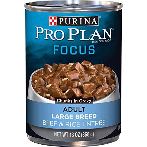 Purina Pro Plan Large Breed Gravy Wet Dog Food, FOCUS Beef & Rice...