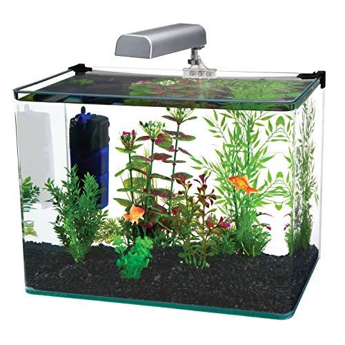 of penn plax aquariums dec 2021 theres one clear winner Penn-Plax Water World Radius Curved Corner Glass Aquarium Kit, 7.5-Gallon