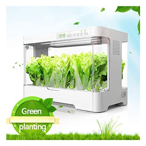 CHENGL Smart Indoor Garden mit intelligenter Temperaturregelung und Beleuchtung, Hydroponics Gemüsepflanzbox für den Innenbereich, 30pot