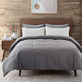 Downcool Cotton Goose Duck Feather Down Comforter (Dark Grey, Twin)