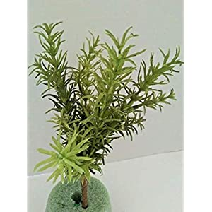 Artificial Rosemary Bush. Silk Succulents The Bush is 6″ Tall with A 3″ Tail – Artificial Flowers #FWB01YN