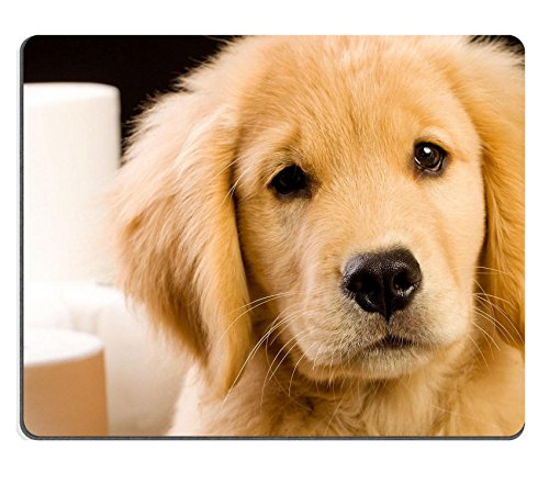 Liili Mouse Pad Natural Rubber Mousepad Soft Fluffy Golden Retriever Puppy Dog House Trained with Toilet Paper Image ID 10741407