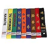 Redox Personalized Customized Embroidery Color Belt Solid Rank Martial Arts, Karate, Taekwondo, Judo, Jiu Jitsu Width 1.6inch Belt (Black, 102')