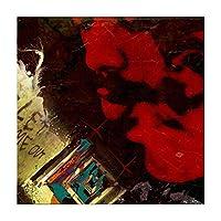 Suuyar Evilldewer美しい混乱のポスターとプリントアルバムカバー壁アートプリントキャンバスにリビングルームホーム-20X20インチX1フレームレス