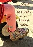 dicker TageBuch Kalender 2017 'Das Leben ist wie Dreirad fahren': Endlich genug Platz für dein Leben! 1 Tag pro DIN A4 Seite
