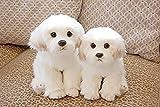 YAYY Bichon Frise Puppy Peluche Perro de Peluche Peluche Simulación Linda Mascotas Fluffy Baby Dolls...