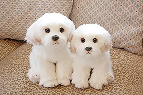 YAYY Bichon Frise Puppy Peluche Perro de Peluche Peluche Simulación Linda Mascotas Fluffy Baby Dolls Regalos de cumpleaños(Upgrade)