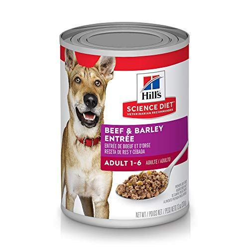 Hill's Science Diet Wet Dog Food, Adult, 13 oz Cans, 12 Pack -  7039