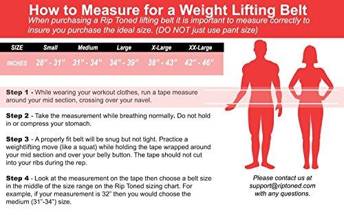 Hebeband Rip straffen,11,4 cm Gewichtheben Rückenstütze & Bonus Ebook Abbildung 2